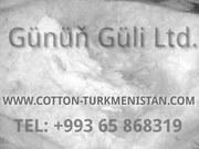 Волокно хлопковое отбеленное - Sell bleached cotton fibre